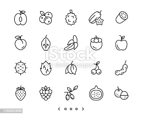 fruits line icons set vector