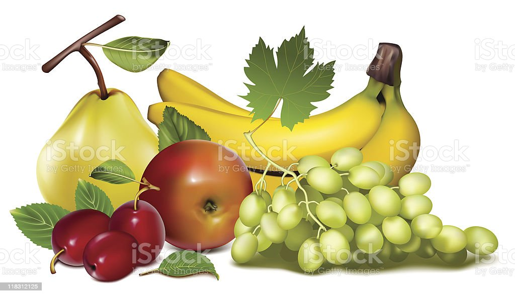 Fruits. royalty-free stock vector art