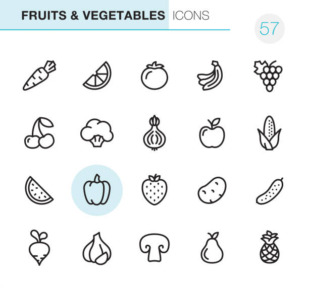 Fruits & Vegetables - Pixel Perfect icons 20 Outline Style - Black line - Pixel Perfect icons / Set #57  Fruits & Vegetables icons are designed in 48x48pх square, outline stroke 2px.  First row of outline icons contains:  Carrot, Orange Slice, Tomato, Bananas, Grape icon;  Second row contains:  Cherry, Broccoli, Onion, Apple-Fruit, Corn-Crop;  Third row contains:  Watermelon, Bell Pepper, Strawberry, Potato, Cucumber;   Fourth row contains:  Turnip, Garlic, Champignon, Pear, Pineapple.  Complete Primico collection - https://www.istockphoto.com/collaboration/boards/NQPVdXl6m0W6Zy5mWYkSyw garlic stock illustrations