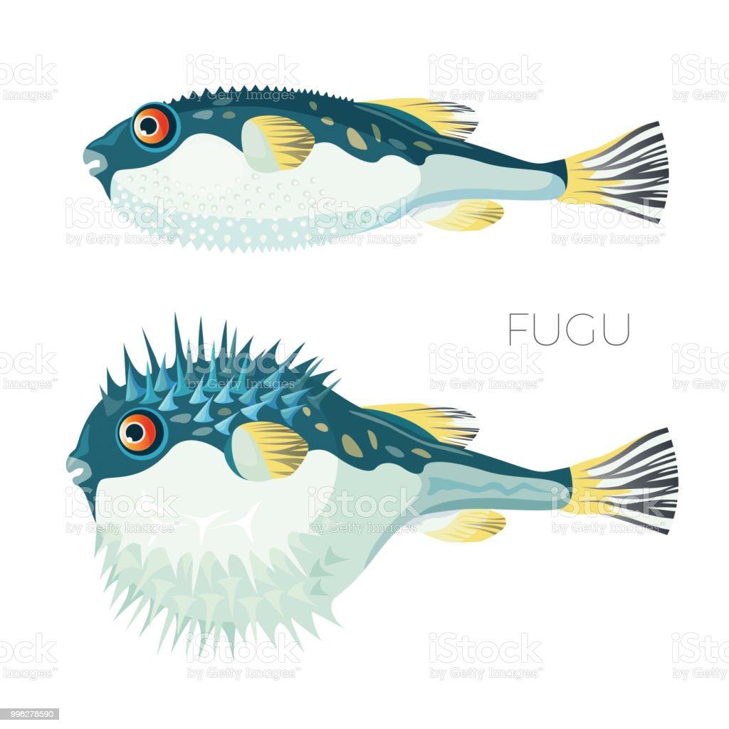 Fugu Fish Japanese Puffer Fish Vector Sketch Drawing Stock Vector ...