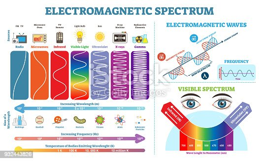 Full Electromagnetic Spectrum Information collection, vector illustration diagram with wave lengths, frequency and temperature. Wave structure scheme. Educational physics infographic elements.