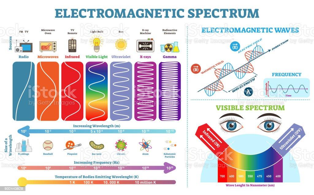 Coleção completa de informações do espectro eletromagnético, diagrama de ilustração vetorial com comprimentos de onda, frequência e temperatura. Esquema de estrutura de onda eletromagnética. Elementos de física infográfico. - ilustração de arte em vetor
