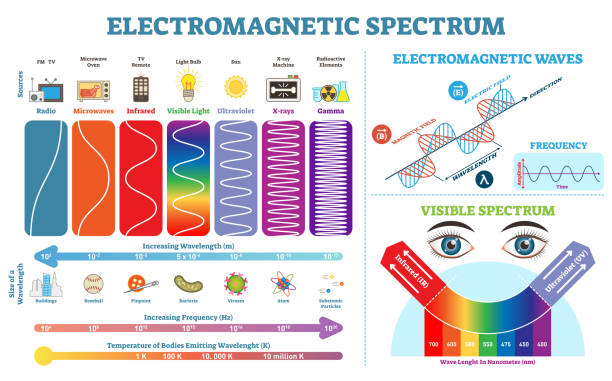 Full Electromagnetic Spectrum Information collection, vector illustration diagram with wave lengths, frequency and temperature. Electromagnetic wave structure scheme. Physics infographic elements. vector art illustration