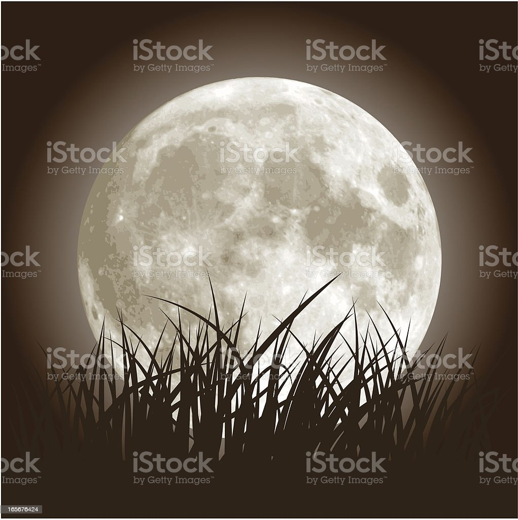 Full Moon and Grass vector art illustration