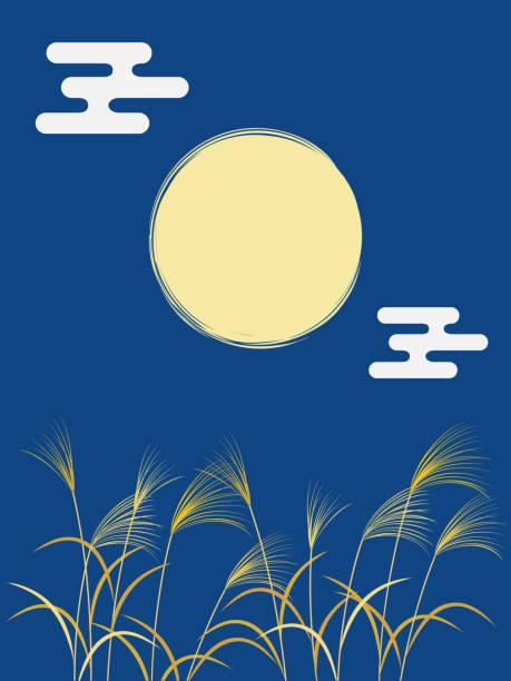 illustrazioni stock, clip art, cartoni animati e icone di tendenza di full moon in night sky and miscanthus sinensis - miscanthus sinensis