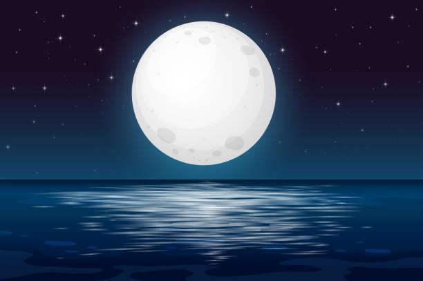 a full moon night at the ocean - moon stock illustrations, clip art, cartoons, & icons