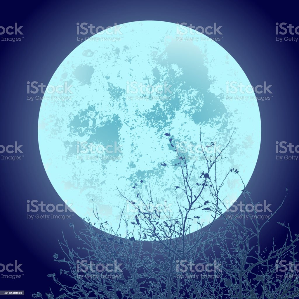 full moon vector art illustration