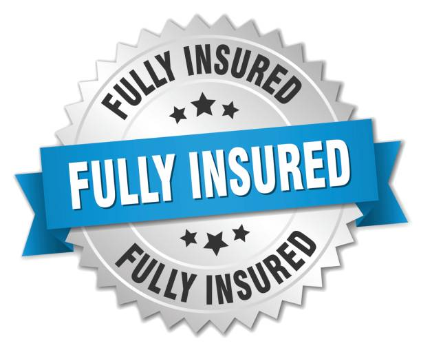 illustrazioni stock, clip art, cartoni animati e icone di tendenza di fully insured round isolated silver badge - pieno