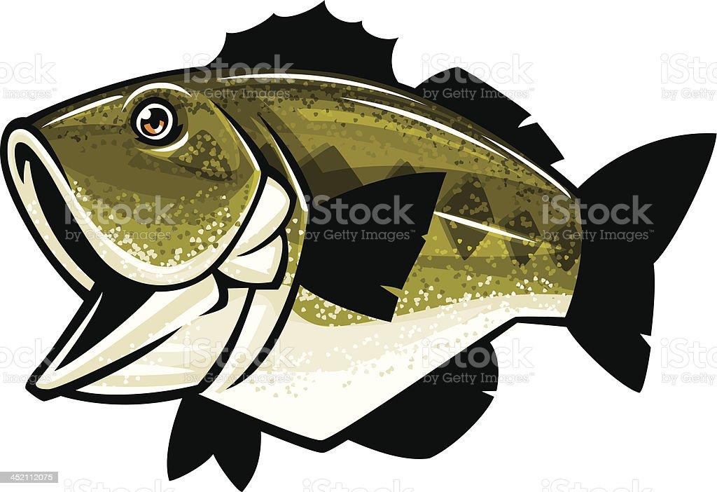 Cartoon Fish Bass