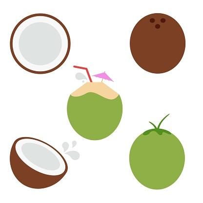 Fun Coconut Vector Illustration Set on White