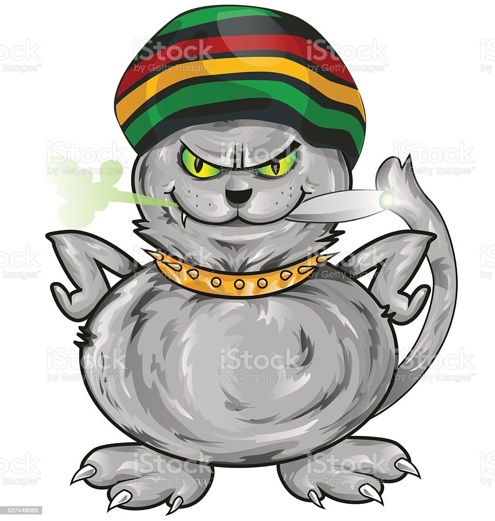 fun jamaican cat isolated on white background vector art illustration
