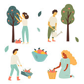 Funky flat people working in the garden, gathering crop, watering plants. Vector illustration