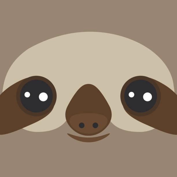 illustrations, cliparts, dessins animés et icônes de drôle et mignon sourire trois – toed sloth sur fond marron. vector - emoji paresseux