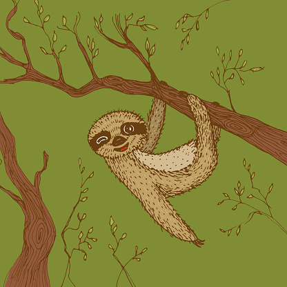 funny and cute smiling Three-toed sloth wink on branch brown green beige color background. sketch, drawing by hand. Vector