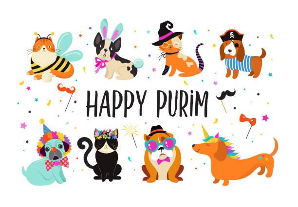 lustige tiere, haustiere. süße hunde und katzen mit einem bunten karnevalskostüme, vektor-illustration. glücklich purim-banner - piratenschrift stock-grafiken, -clipart, -cartoons und -symbole