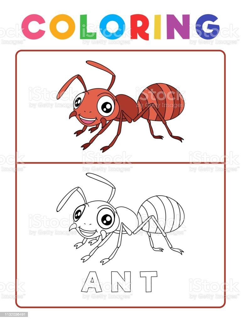 Ilustración De Divertido Hormiga Insecto Animal Para Colorear Libro