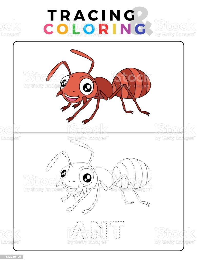 Ilustración De Gracioso Hormiga Insecto Animal Rastreo Y Libro De