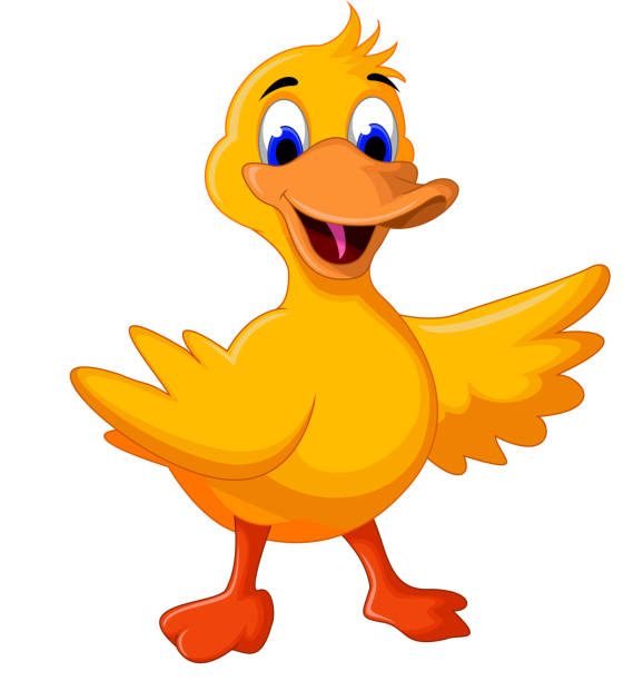 funny baby duck cartoon - duck stock illustrations