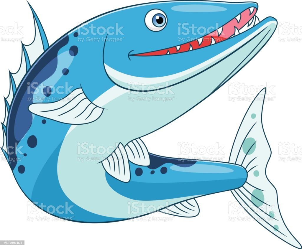 Funny barracuda vector art illustration