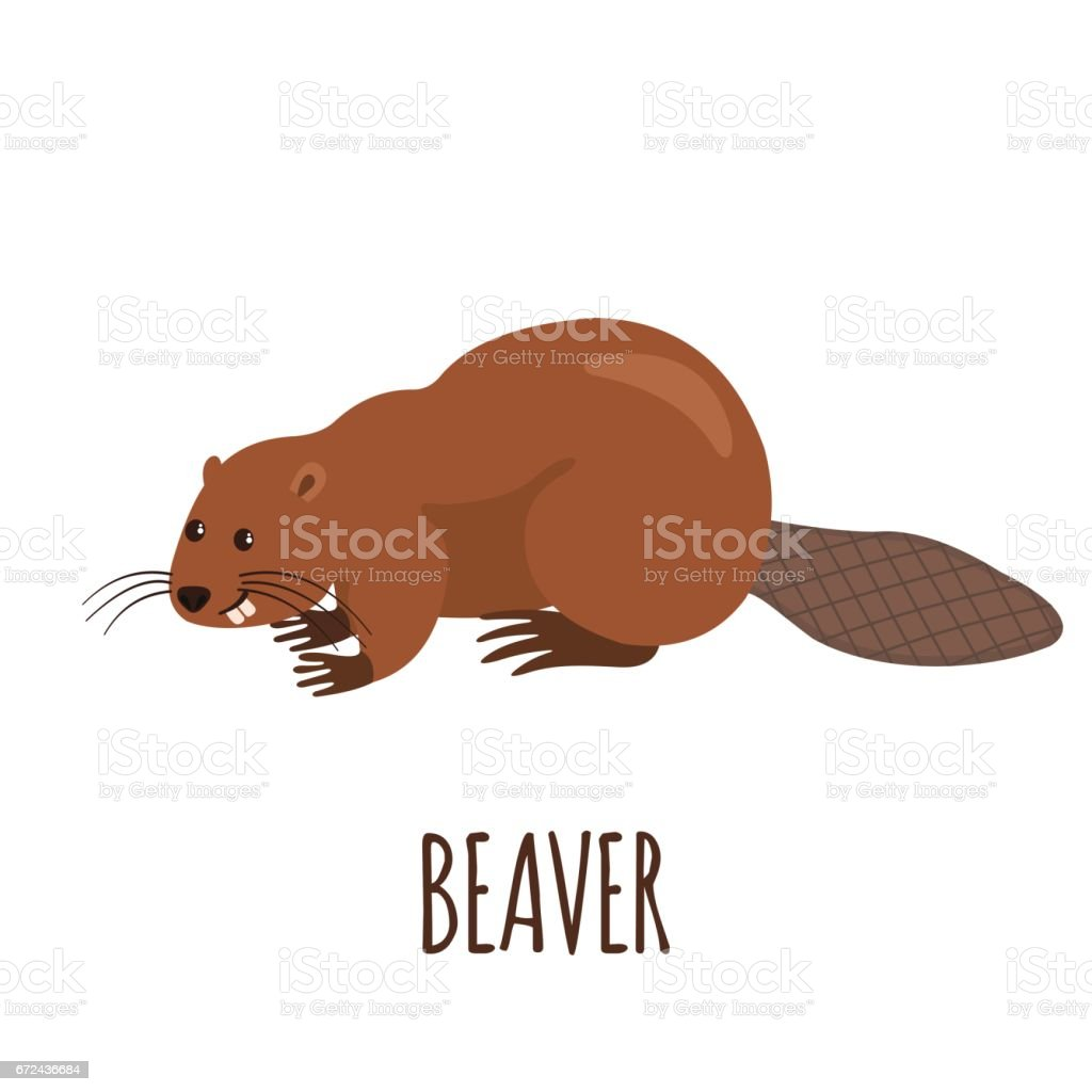 Funny beaver in flat style. vector art illustration