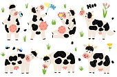Funny black and white cows collection. Cow characters set sitting, standing, eating, mooing. Cute farm animals for kids design. Vector illustration