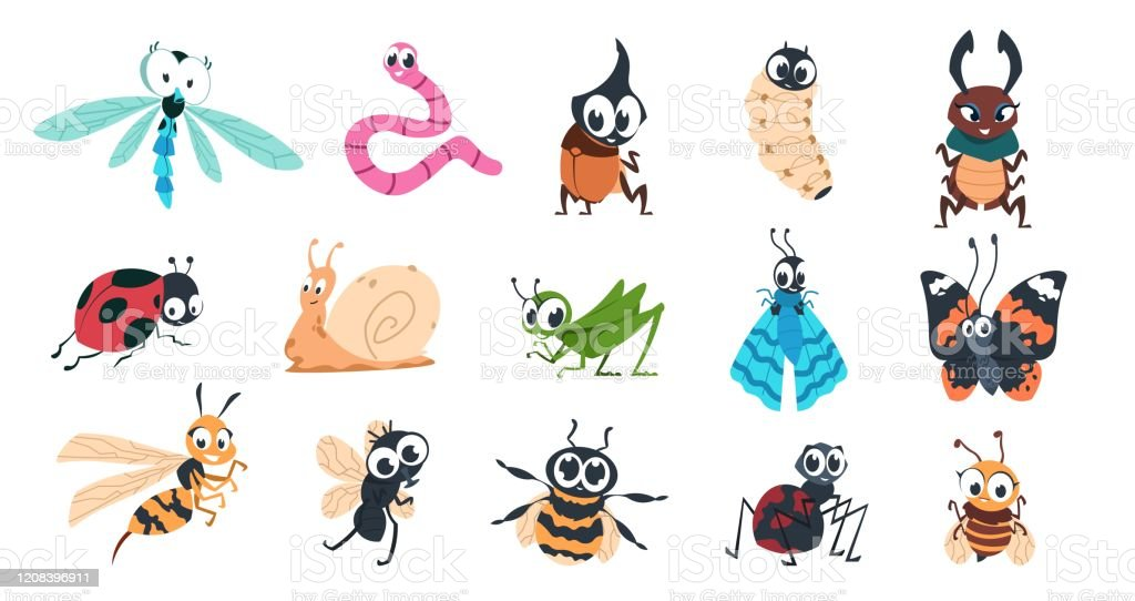 Funny Bugs Cartoon Cute Insects With Faces Caterpillar Butterfly Bumblebee Spider Colorful Characters Vector Illustration For Kids Stock Illustration Download Image Now Istock