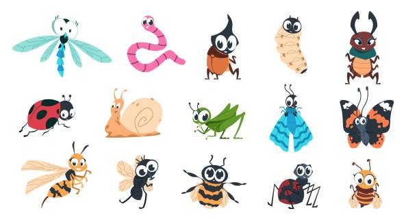Funny bugs. Cartoon cute insects with faces, caterpillar butterfly bumblebee spider colorful characters. Vector illustration for kids Funny bugs. Cartoon cute insects with faces, caterpillar butterfly bumblebee spider larvae colorful characters. Vector designs illustration smiling creature with eyes for learning children insects stock illustrations