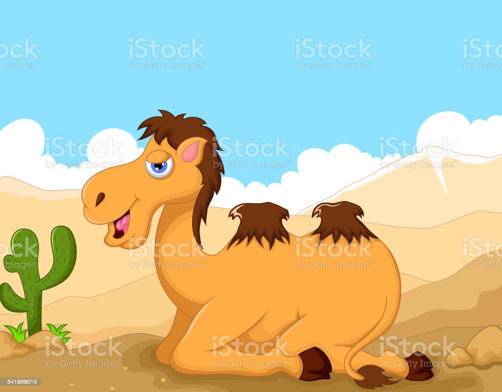 funny camel cartoon sitting with desert landscape background stock