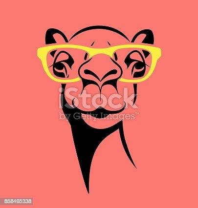 istock funny camel wearing glasses. vector illustration for T shirt, poster, print design. 858465338