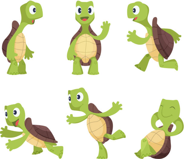 Top 60 Turtle Clip Art Vector Graphics And Illustrations Istock