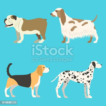 istock Funny cartoon dog character bread in flat style puppy pet animal doggy vector illustration 816898120