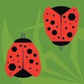 funny cartoon ladybird isolated on green background