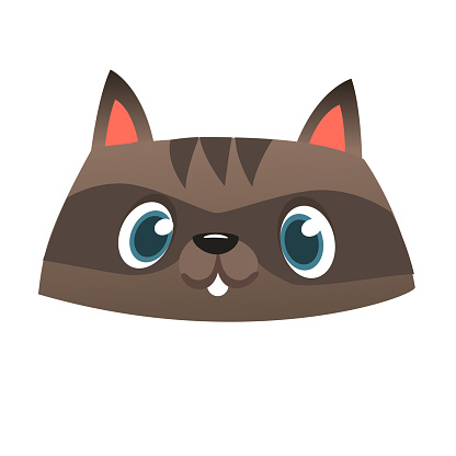 Funny cartoon raccoon head icon. Vector illustration. Design for print or children book illustration