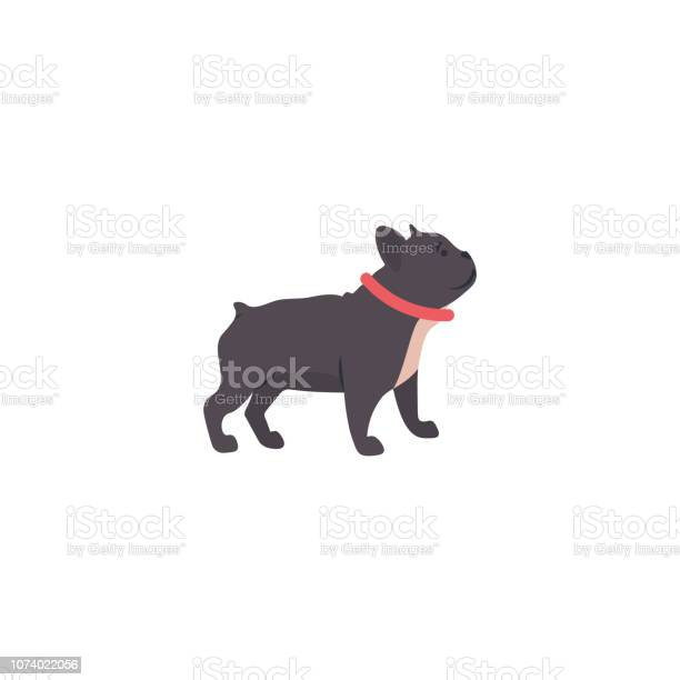 Funny cartoon style icon of french bulldog for different design vector id1074022056?b=1&k=6&m=1074022056&s=612x612&h=8ajy0 5cg0ypkyoywpw8 uos3kbktdkbpm6wwqvmzom=