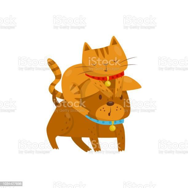 Funny cat sitting on the head of a dog cute domestic pet animals vector id1034427698?b=1&k=6&m=1034427698&s=612x612&h=a6vwyjcocsbfsetct4 ckudij5njzv fsj1mqbhmh0y=