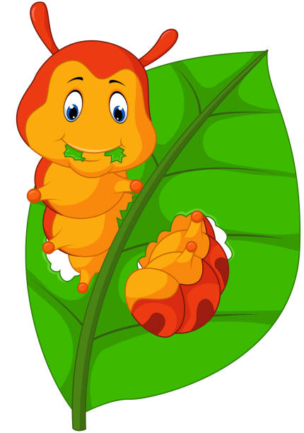 stockillustraties, clipart, cartoons en iconen met funny caterpillar eating leaf - bargerecht