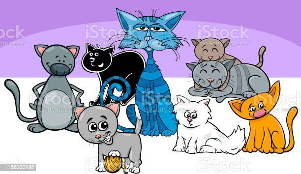 Funny cats pets group cartoon illustration vector id1158030192?b=1&k=6&m=1158030192&s=612x612&h=a3oxkhaugd4vgymf5gjufjayblsdxi7awcs isnirne=