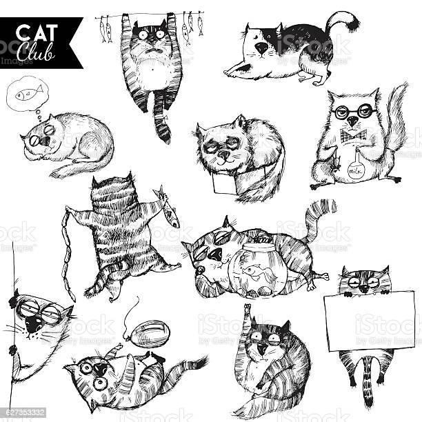 Funny cats vector id627353332?b=1&k=6&m=627353332&s=612x612&h=nrgzv9plleuhx9kocsterrc25wbuo53xitrrgqtun9a=