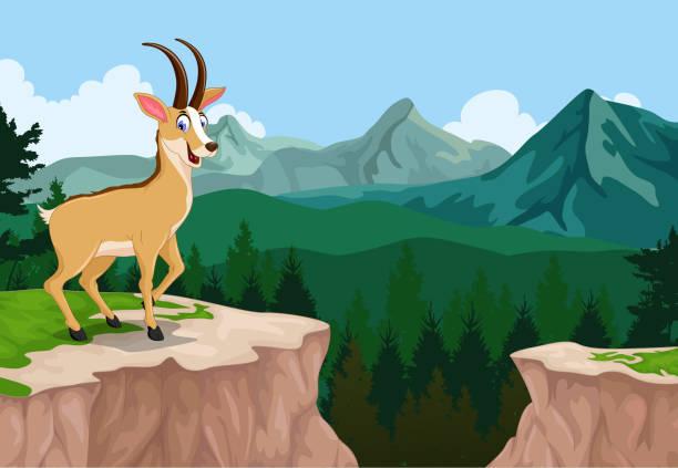 lustiger gämse mit klippe gebirge landschaftshintergrund - bergziegen stock-grafiken, -clipart, -cartoons und -symbole