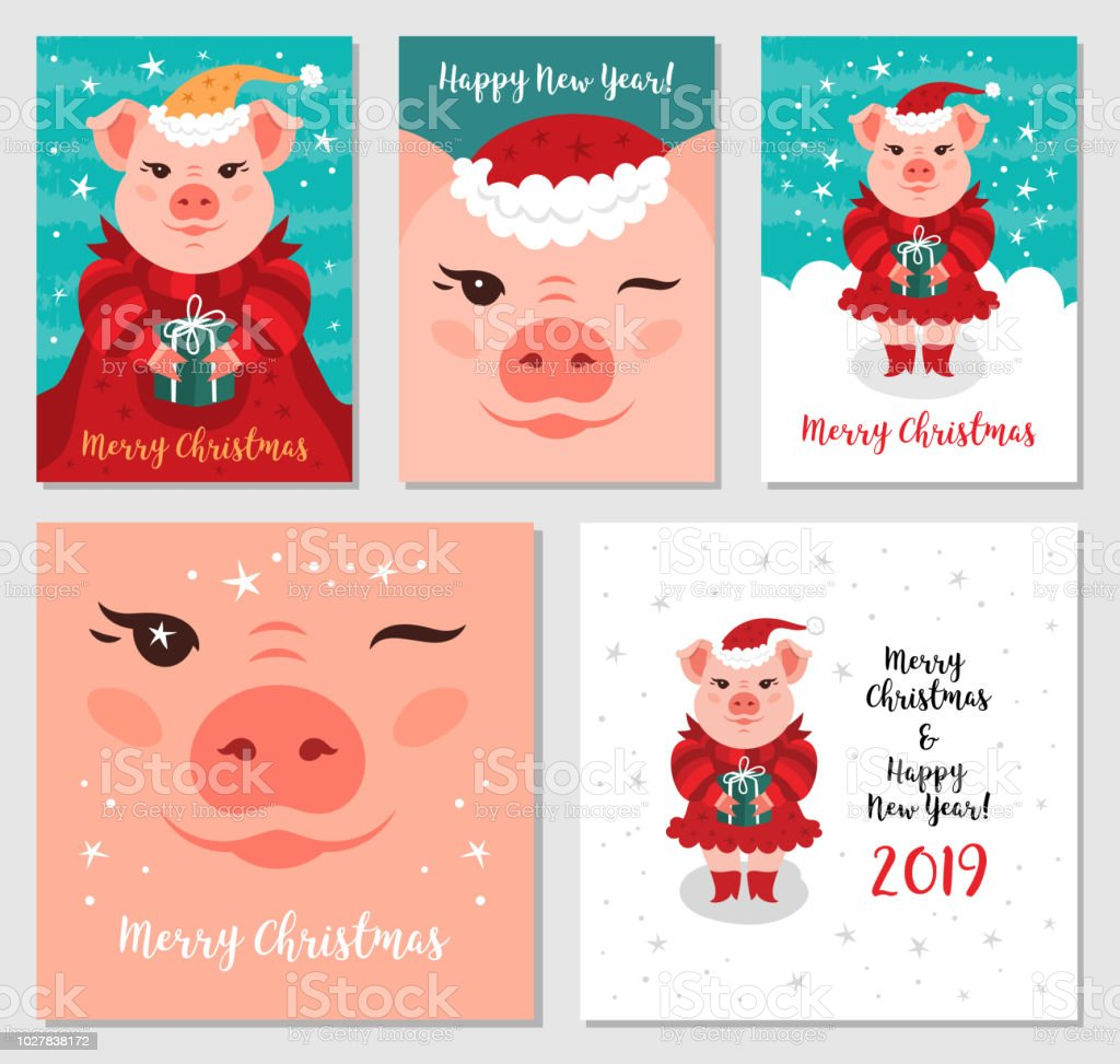 Funny Christmas Pigs Greeting Cards Merry Christmas And New Year