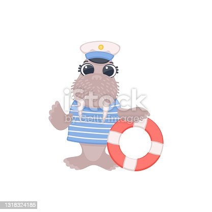 Funny comic walrus sailor with lifebuoy flat vector illustration isolated.