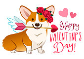 Funny corgi dog dressed as Cupid, with angel wings, rose flower wreath on head, heart arrow in mouth. Valentine's day, love, pets, dog lovers cartoon theme design element for greeting cards, banners.