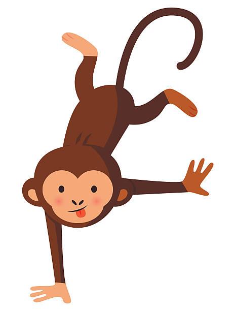 Lustige verrückte monkey, Vektor-illustration – Vektorgrafik
