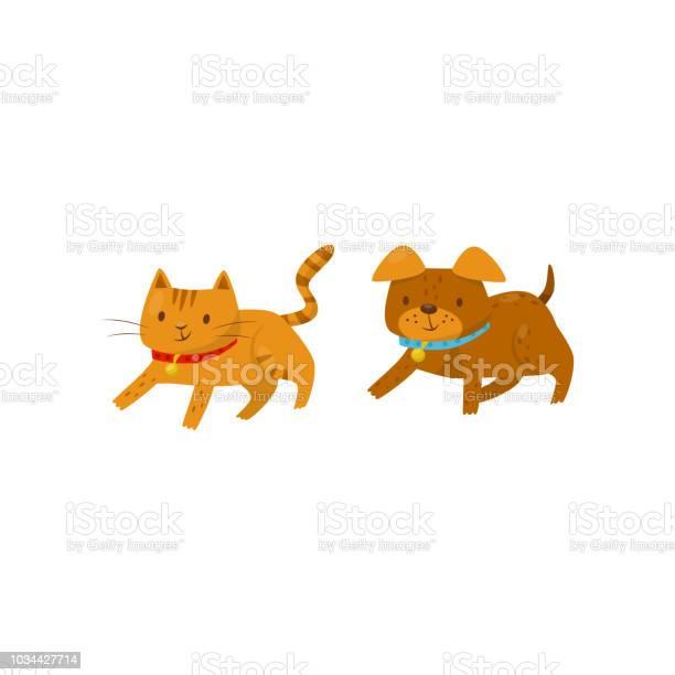 Funny dog and cat running together cute domestic pet animals cartoon vector id1034427714?b=1&k=6&m=1034427714&s=612x612&h=ipucrlca90ma5gsmn8x bufv53w5luevqi3ucmzinm4=