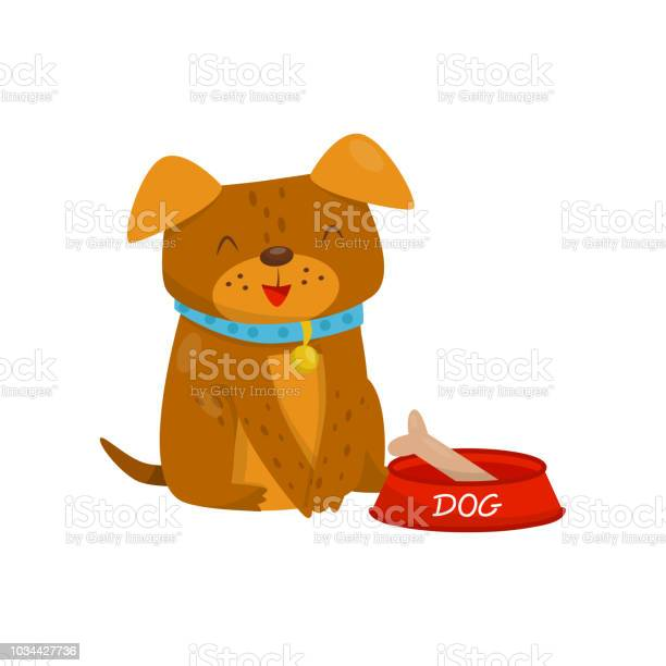 Funny dog sitting next to a bowl of food cute domestic pet animal vector id1034427736?b=1&k=6&m=1034427736&s=612x612&h=qsvakvf2ahpq7vfvaiyupq ia 5bovbn2cgqmhwz js=