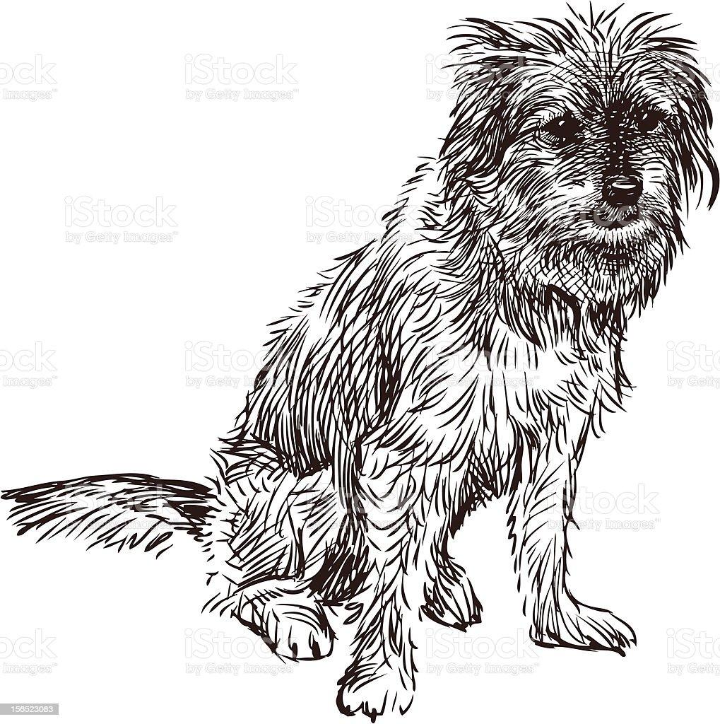 funny dog vector art illustration