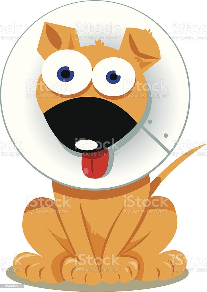 Funny Dog with Elizabethan Collar royalty-free stock vector art