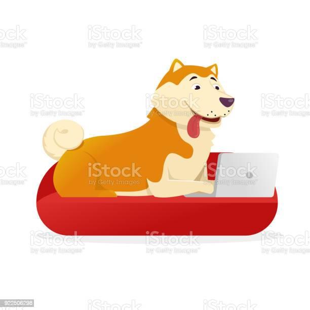 Funny dog with laptop rounds its tail up vector flat illustration dog vector id922506298?b=1&k=6&m=922506298&s=612x612&h=5alga7s00nlzhf21hbhztu5h iqr1kbi4treuqu qxu=