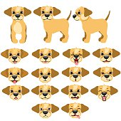 Funny dogs expressing emotions, big vector set