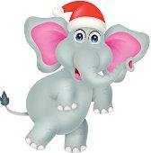 funny elephant cartoon with hat christmas